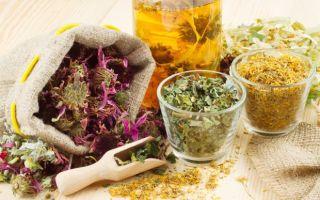 Травы от изжоги – как альтернатива химическим препаратам