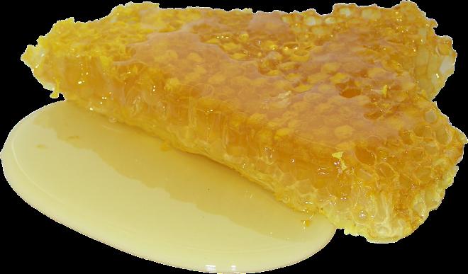 Кусок дикого меда